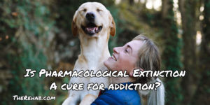 Pavlov's Dog And Pharmacological Extinction: A Cure For Addiction?